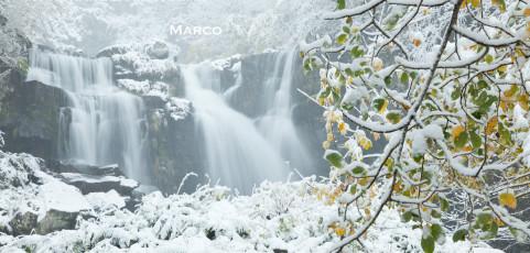 Buon Natale e Felice 2013 da Provediemozioni