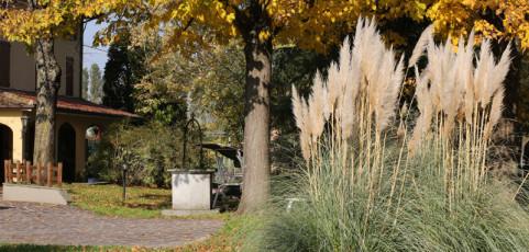 Passeggiata in giardino di Paolo Francia