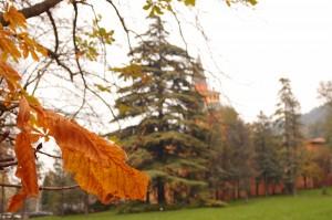 Parco Talon - Foto di Chiara Pazzaglia