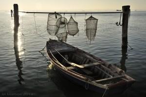 Foto di Massimiliano Mattioli