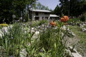 Giardino Esperia