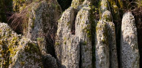 Parco dei Gessi bolognesi e Calanchi dell'Abbadessa – escursione domenica 3 aprile 2016