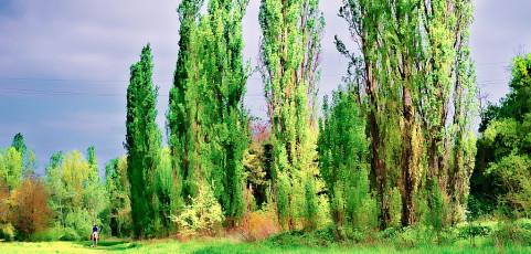 Un parco per sognare di Alessandro Cellini – 20 aprile 2016